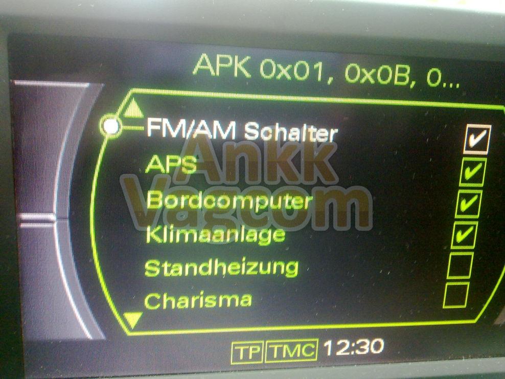 ankk-vagcom_audi_mmi2g_bordcomputer