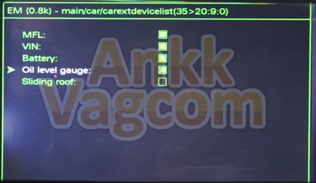 ankk-vagcom_audi_mmi_3g_oil_level_gauge